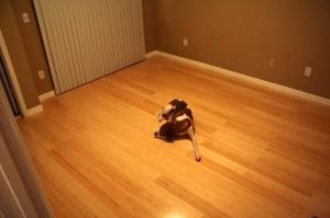 bamboo-floor01