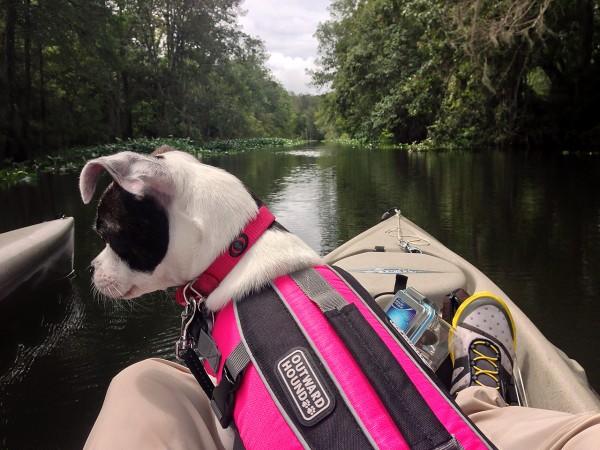 ruby-kayak
